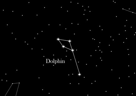 Star Sign The Dolphin