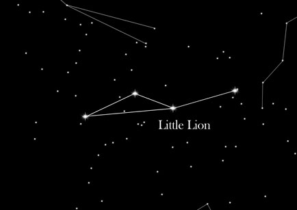 Star Sign Smaller Lion